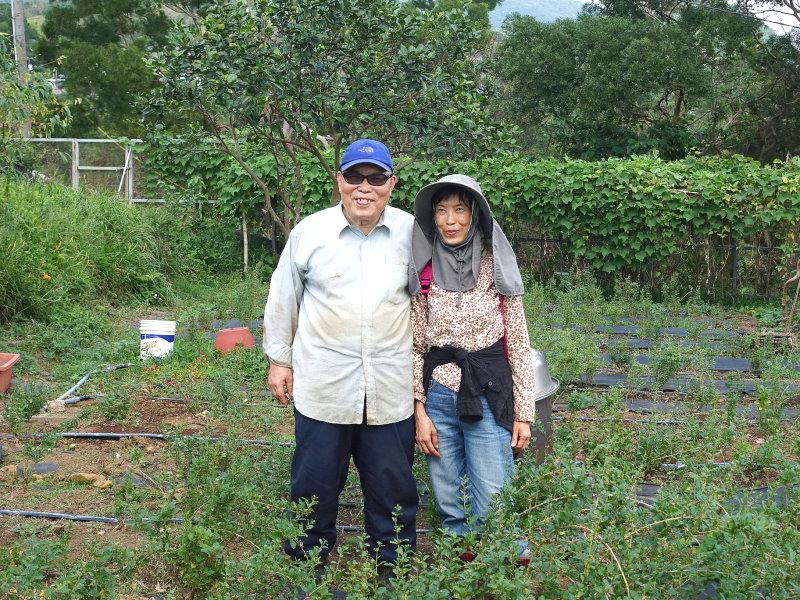一方市民農園 0980-520-506