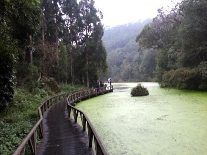 雙連埤&褔山植物園一日遊