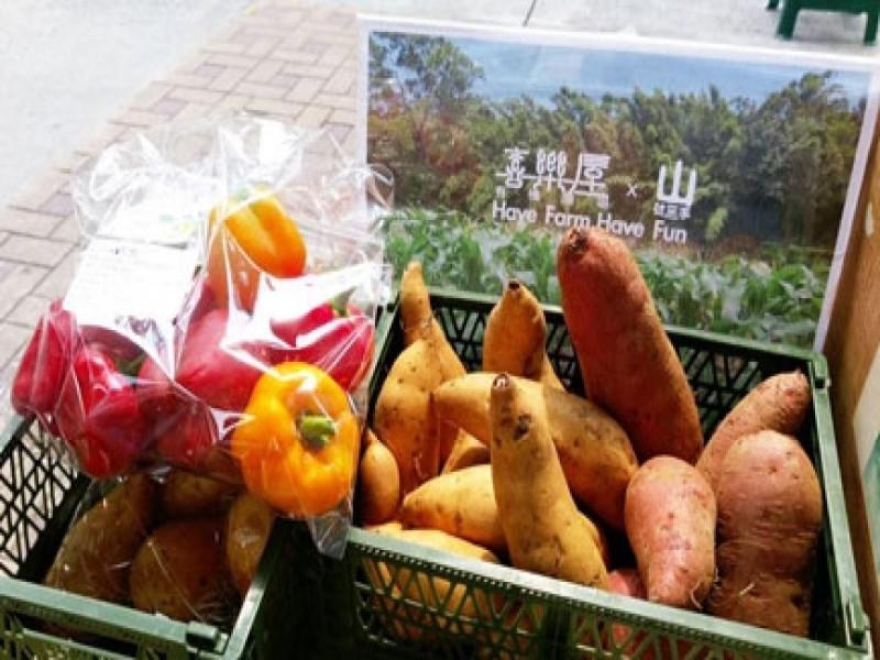 田園城市養生蔬食之旅一日遊