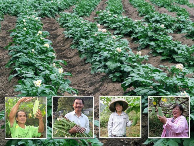 台北市農民市集地圖一覽