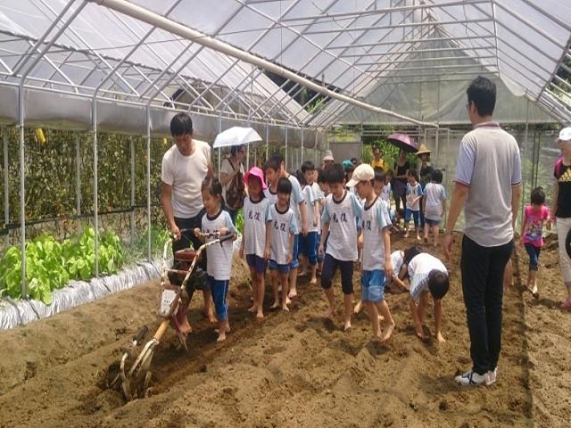 臺北市休閒農場戶外教學體驗又來囉!!