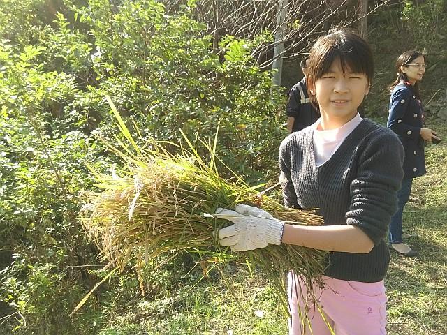 協助食米教育推廣活動有感