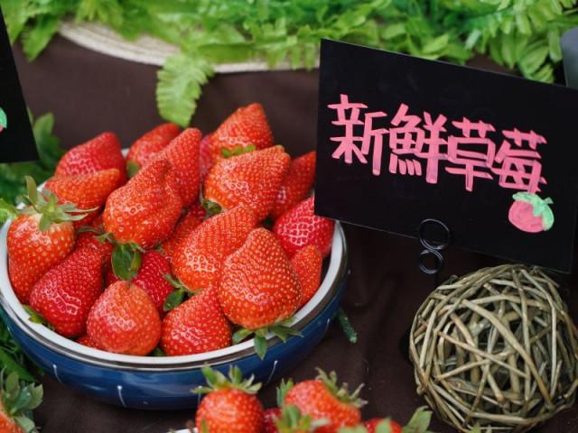2021年內湖區草莓季活動盛大公開!
