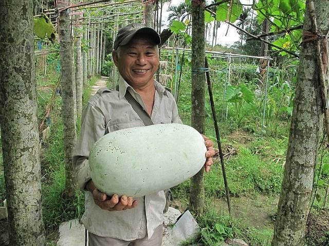 樟湖自然市民農園成立