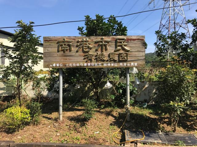 南港區農會綠竹筍產業簡介